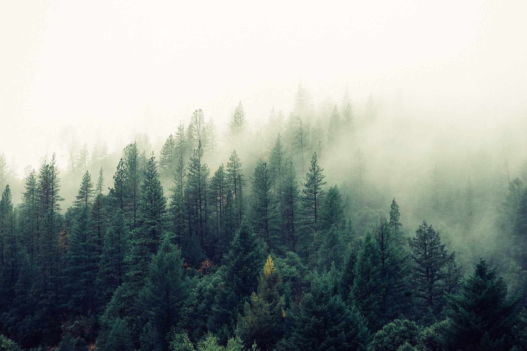行路难,不在水,不在山,只在人情反覆间。