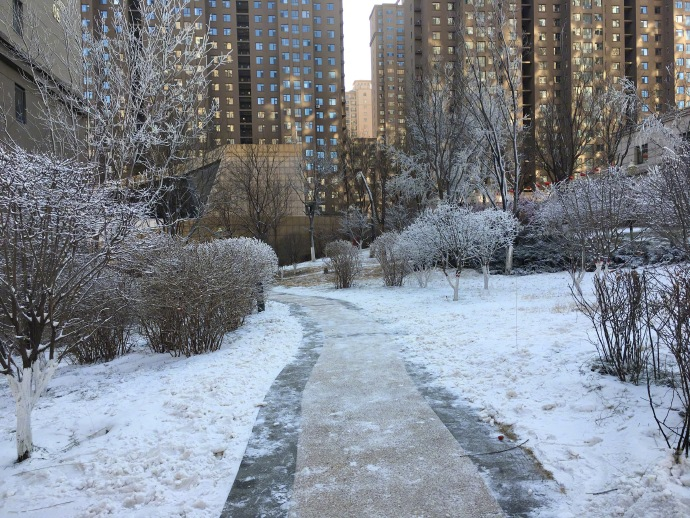 入冬以来一直不下雪,于是小区直接开始人工造雪了……我???