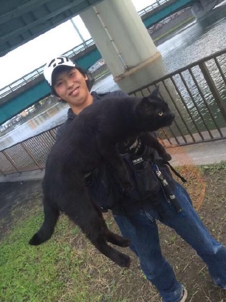 岛国小哥去海边钓鱼,结果当地的一只野猫凑过来对他讨好,很快关系就融洽了…道理我都懂可为什么猫这么大