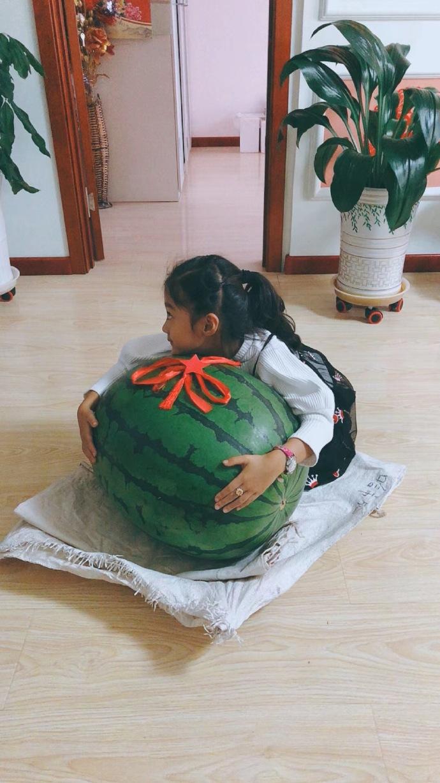 亲戚买了个82斤的大西瓜,惊了!