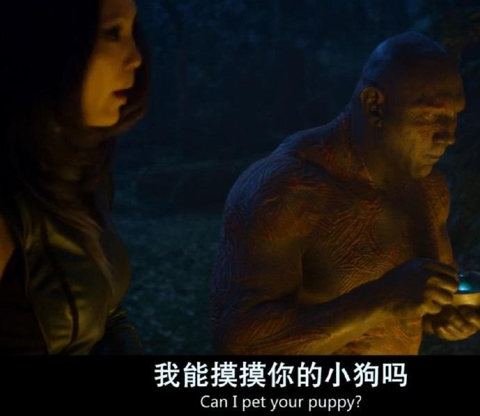 你们外星人到底对浣熊是有什么误解???