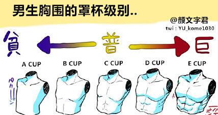 如果把男生の胸围按照从贫到巨分为ABCDE 五个级别…你会喜欢哪一种?