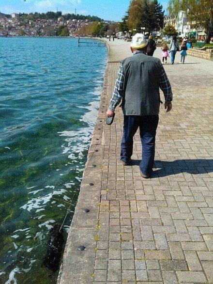 大爷!你倒是回头看看你的狗啊!不是说好要做彼此牵手的天使吗!